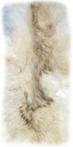 Kojotenfell flausichiges Rückendetail