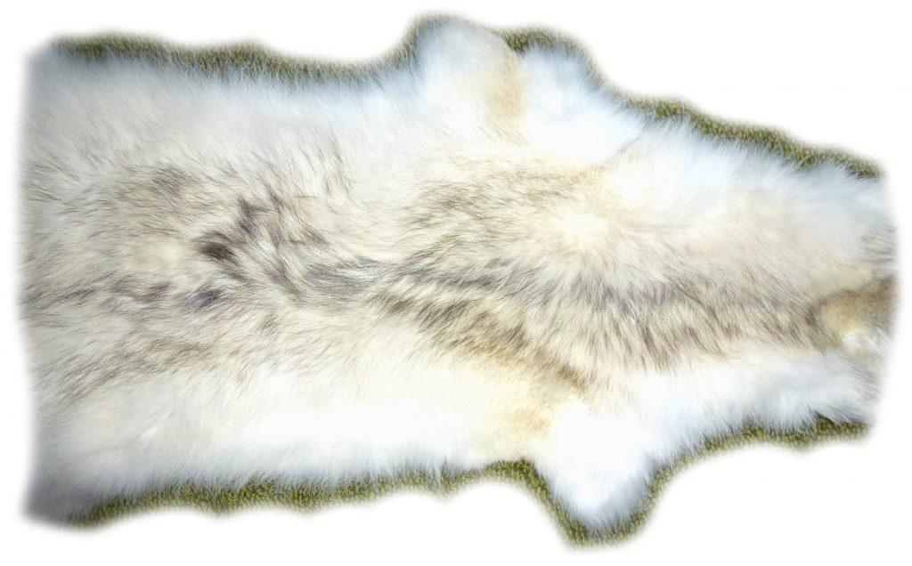 Kojotenfell Rückendatail