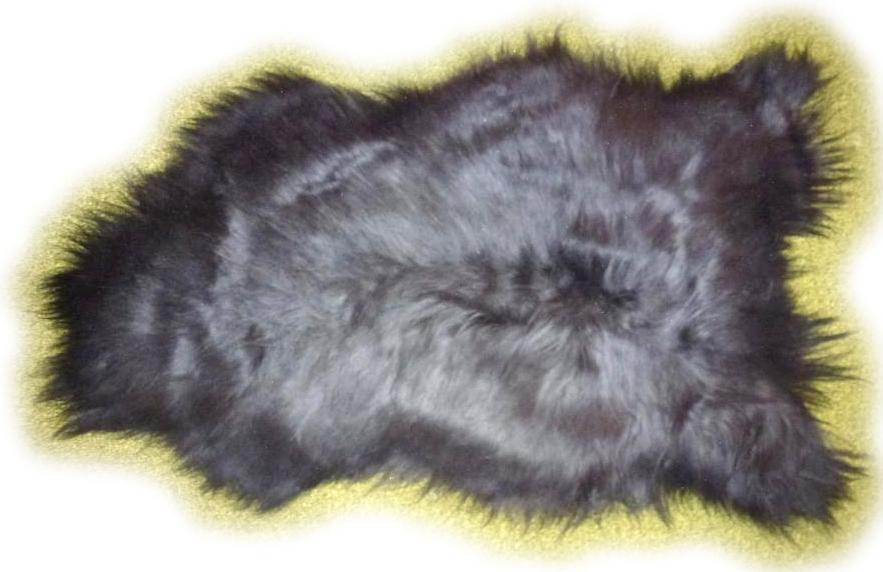 Islandschaffell schwarz