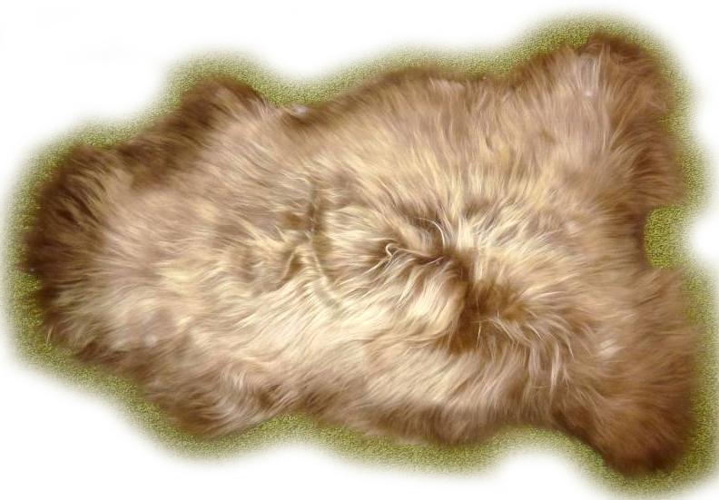 Islandschaffell goldbraun mit geflammten Spitzen