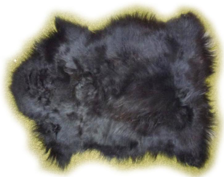 Islandschaffell schwarz mit weißen und grauen Härchen