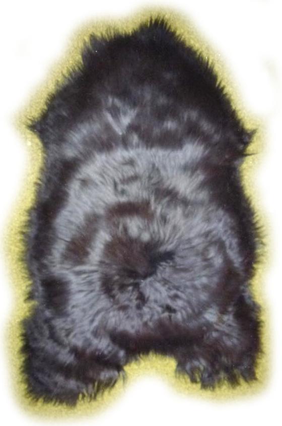Schwarzes Islandschaffell