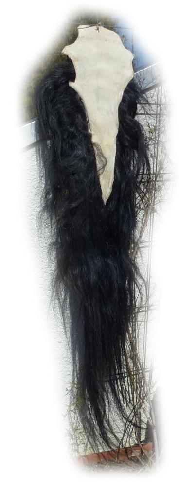 Pferdeschweif Schwarz mit etwas blond 160 cm