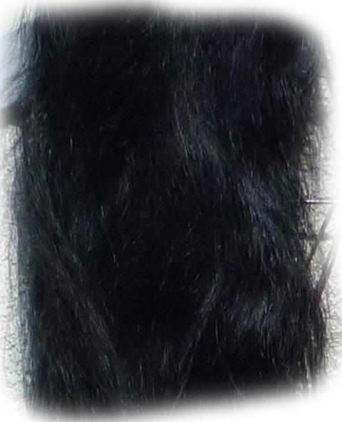 Pferdeschweif schwarz 150 cm Detail