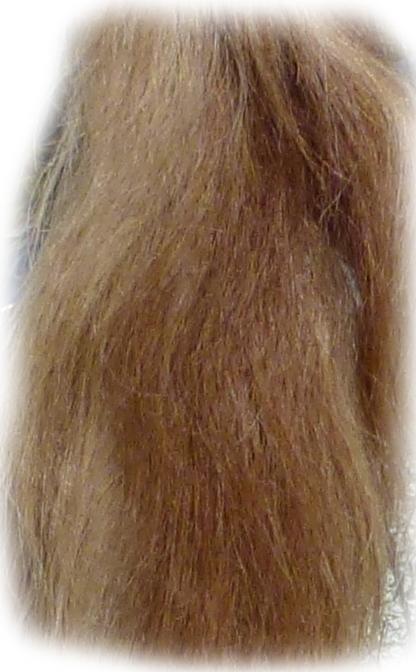 Pferdeschweif Blond mit etwas rot 120 cm Detail
