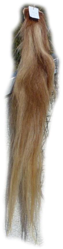 Pferdeschwanz blond mit etwas rot Gesamtansicht