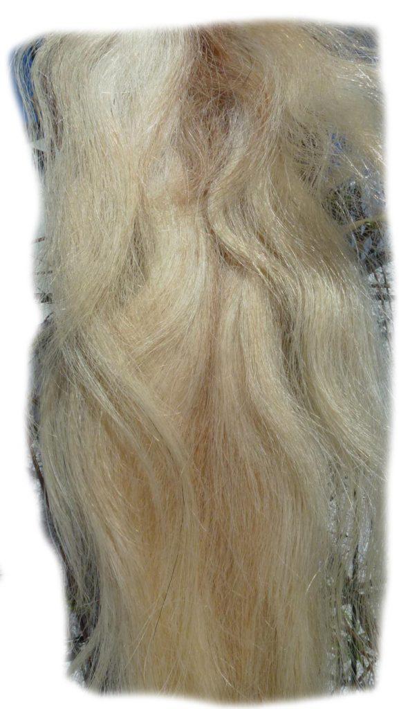 Pferdeschwanz blond 150 cm Detail