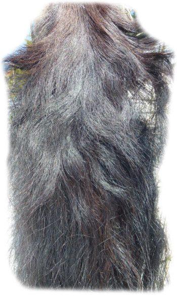 Pferdeschwanz schwarz 150 cm Gesamtansicht