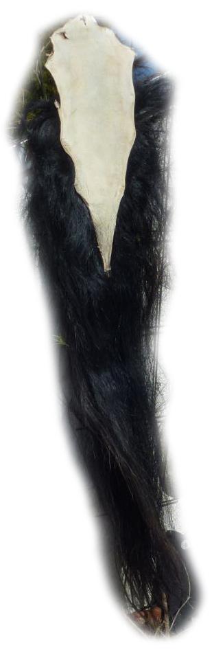 Pferdeschwanz schwarz 150 cm Lederseite