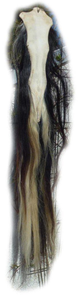 Pferdeschwanz chwarz-blond 120 cm Lederseite