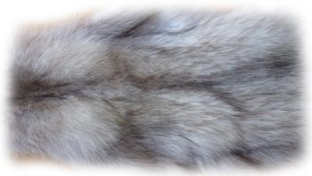 Blaufuchsfell Nackendetail