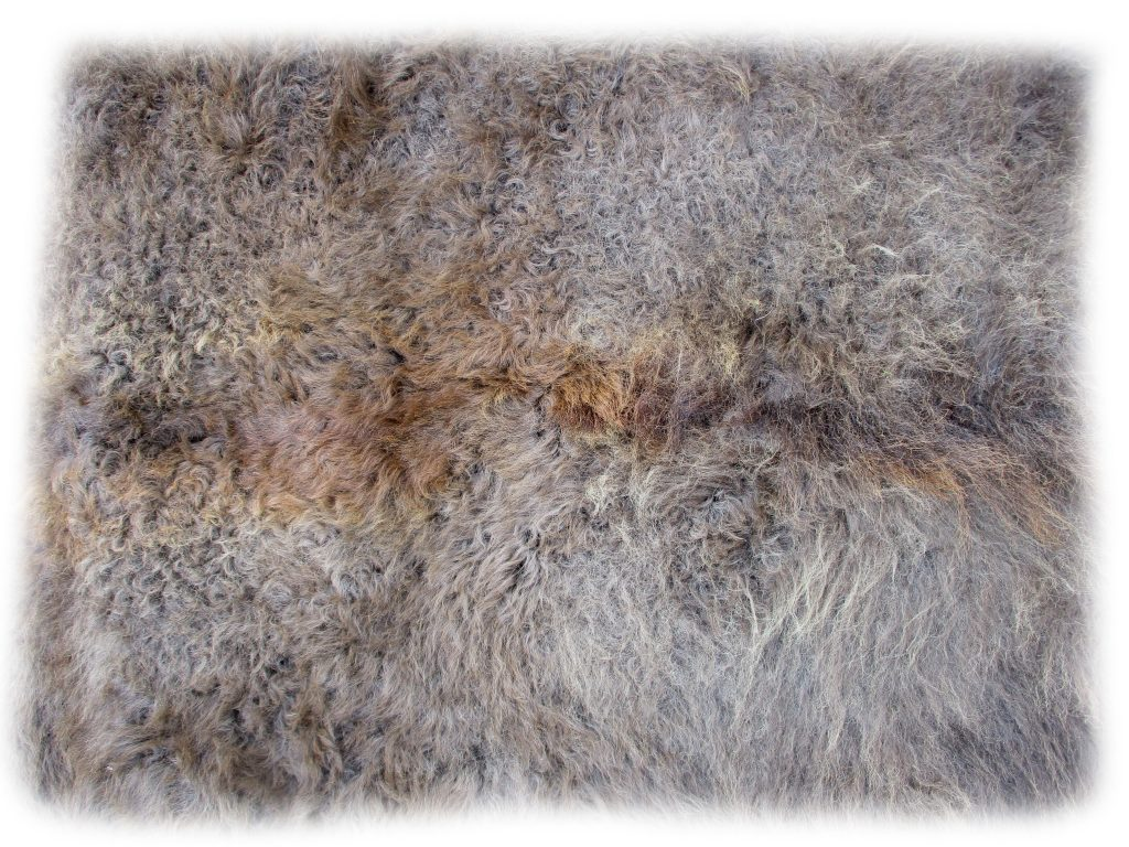 Bisonfell Felldetail