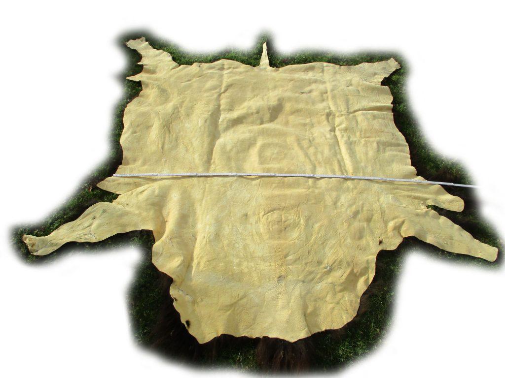 Lederseite des Bisonfells