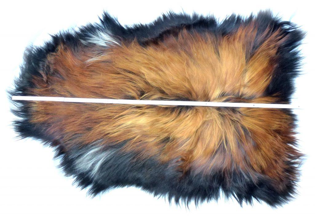 190502 Islandschaffell Schwarz mit geflammten Spitzen Optische Gesamtlänge