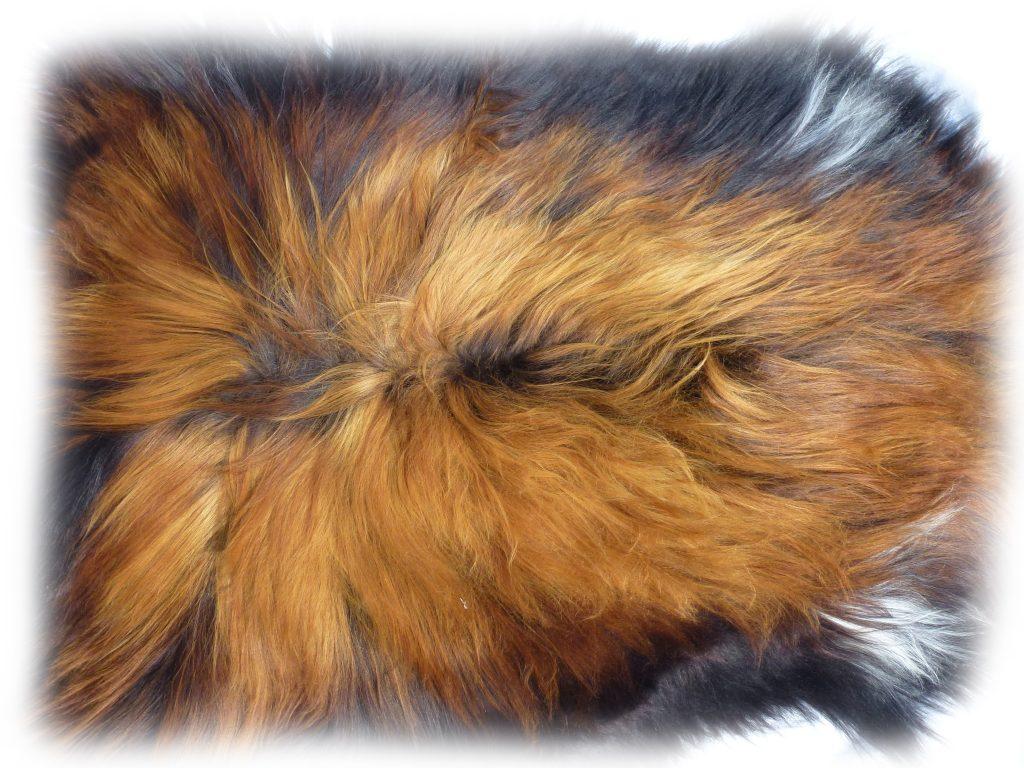 190502 Islandschaffell Schwarz mit geflammten Spitzen Rückendetail