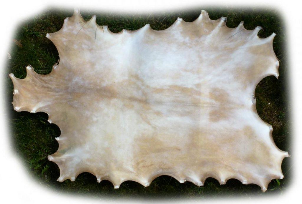 Ziegenpergament