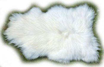 Reinweißes Islandschaffell