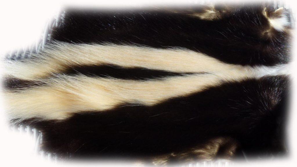 200901 Skunk 87 cm Rückendetail