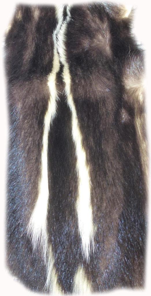 200905 Skunk Rückenzeichnung