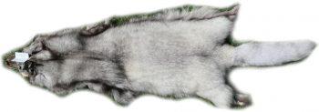 200913 Blaufuchs 131 cm Gesamtansicht