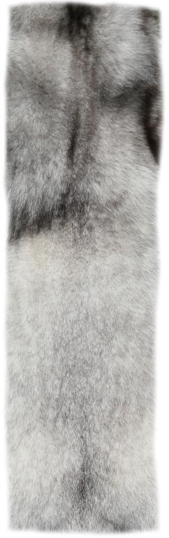 200913 Blaufuchs 131 cm Rückendetail h