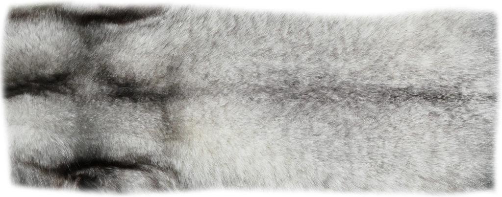 200914 Blaufuchs 126 cm Rückendetail