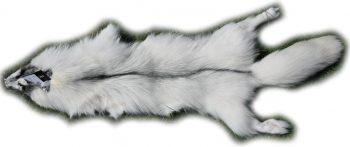 200916 Arctic Marble Fuchs 137 cm Gesamtansicht