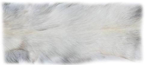 200919 Snow Glow Fuchs 135 cm Rückendetail