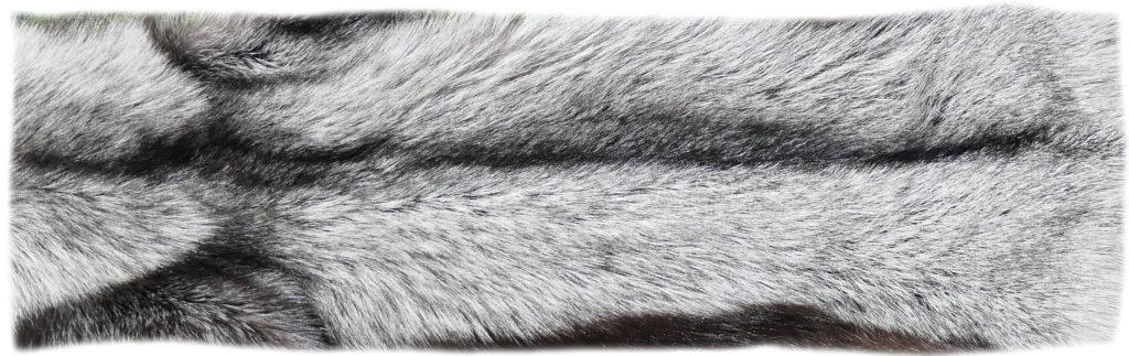 200921 Silberfuchs 135 cm Rückendetail