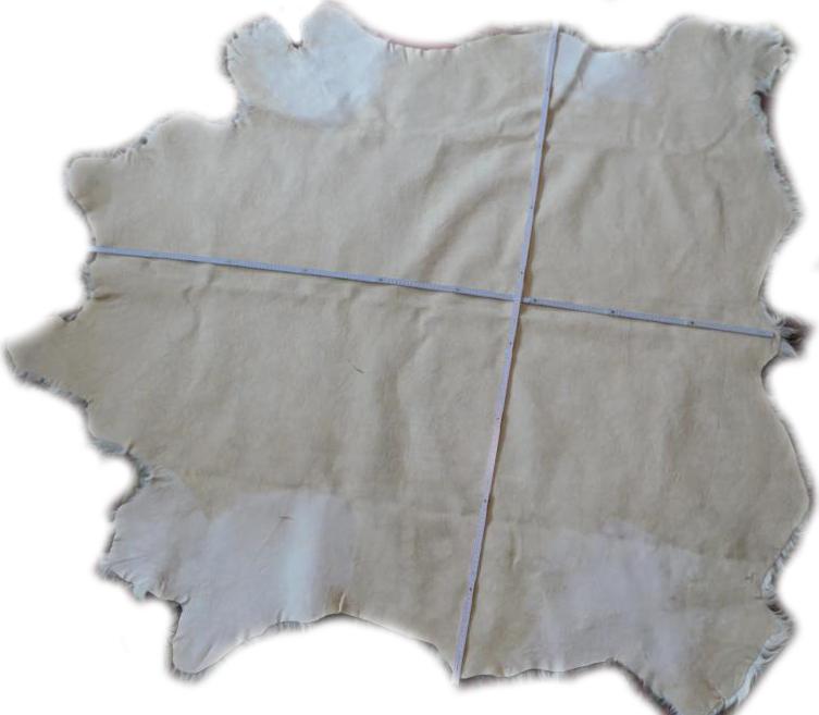 2101940 Galloway weip mit grauen Flecken Lederseite