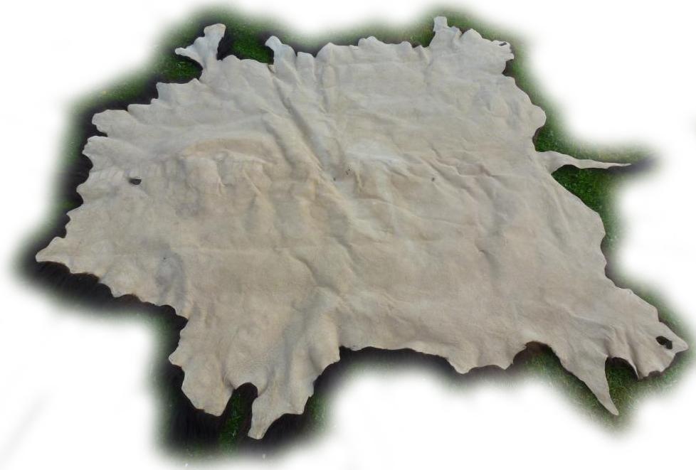Bisonfell 04 Lederseite
