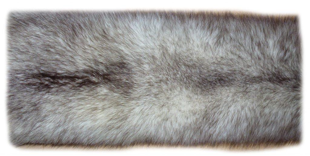 Blaufuchsfell 12-02 Felldetail