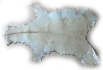 Damhirschrohhaut 114