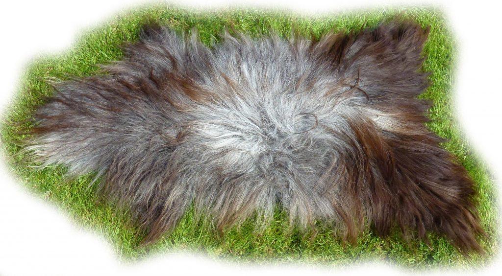 Islandschaffell grau mit braunen Spitzen Fellseite