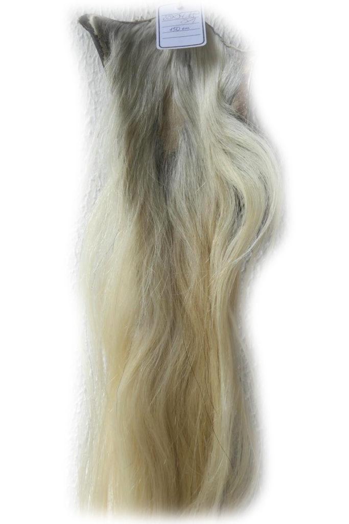 Blonder Pferdeschweif