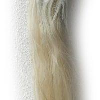 Pferdeschweif blondgrau 150 cm