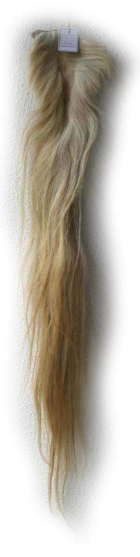 Pferdeschweif blond 130 cm