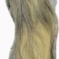 Pferdeschweif 210815 Detail