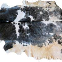 Stierfell schwarz-weiss