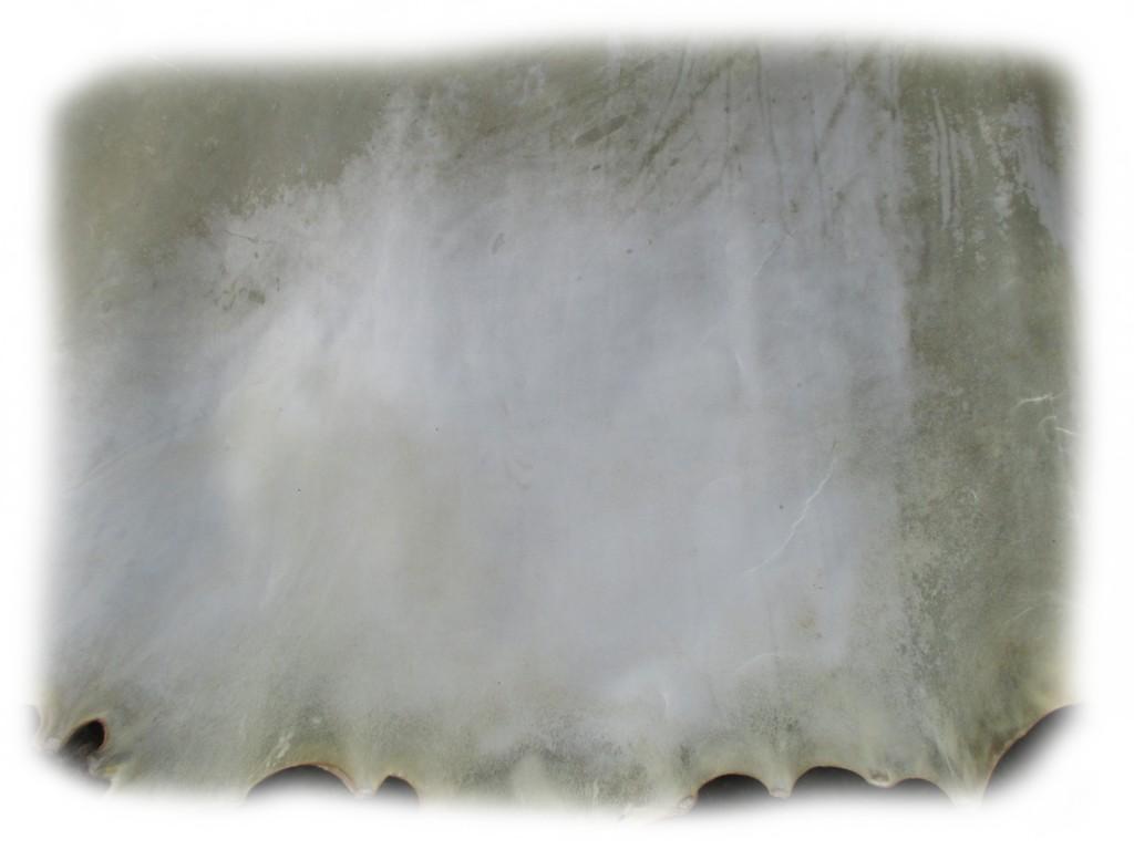 Detailansicht einer Rohhaut vom Rind