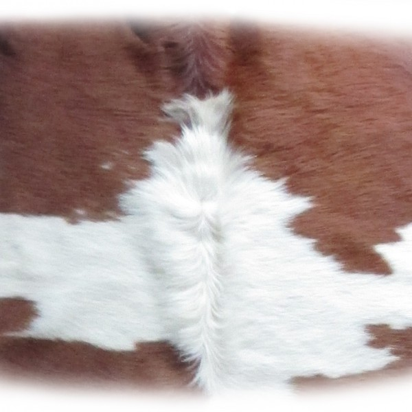 Stierfell Detail