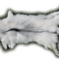 200918 Arctic Marble Fuchs 128 cm
